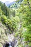 Waterfall and lush greenery. In Schwangau royalty free stock photos