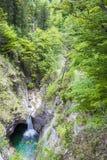 Waterfall and lush greenery. In Schwangau stock photos