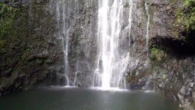 Waterfall in Maui Hawaii. Waterfall in Lush Maui Hawaii stock video
