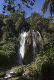 Waterfall in a lush rainforest. Royalty Free Stock Image
