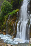 Waterfall among lush vegetation Stock Photography
