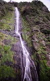 Waterfall, Madeira Royalty Free Stock Photography