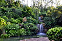 Waterfall. After manual carefully designed waterfall garden Stock Image