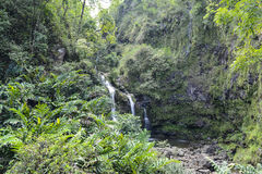 Waterfall in Maui Royalty Free Stock Images