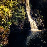 Waterfall on Maui. Waterfall in Maui djungle Royalty Free Stock Photography
