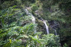 Waterfall in Maui Hawaii Stock Photography