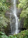 Waterfall in Maui Hawaii. Flowing waterfall in Maui`s tropical jungle Stock Photo