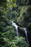Waterfall in Maui Hawaii Stock Photos