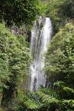 Waterfall. Maui island hanna, very good for any kind of manipulation Stock Photos