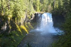 Koosah Falls on Mckenzie River, Cascade Range, Oregon Royalty Free Stock Photography