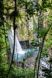 Waterfall of Mexico Xico Veracruz fog forrest