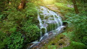 Waterfall in the middle of the deep forest at Kio Mae Pan, Doi Inthanon, Chiang Mai, Thailand