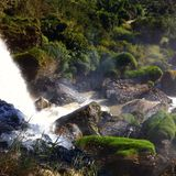 Waterfall in the middle of the jungle Royalty Free Stock Photo