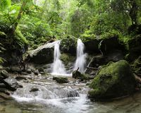 Tropical Rainforest Waterfall in Papua New Guinea. A waterfall in the middle of the jungle in Papua New Guinea flows over large moss-covered boulders on its way stock images
