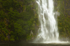 Waterfall at Milford Sound Stock Images