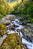 Waterfall in Milford Sound royalty free stock photos