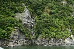 Waterfall of Milford Sound, New Zealand Stock Image