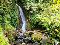 Waterfall in Mistico Arenal Hanging Bridges Park royalty free stock photo