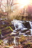 Waterfall in misty autumn forest Stock Photos