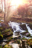 Waterfall in misty autumn forest Stock Photo