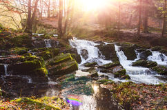 Waterfall in misty autumn forest Stock Photography