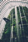 Waterfall in modern indoor garden atrium