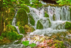 Waterfall and moss. Water flowing over mossy rocks stock photos
