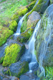 Waterfall and Moss Royalty Free Stock Photography