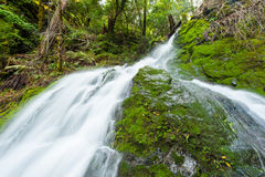 Waterfall through a moss covered rock area Stock Images