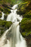 Waterfall through a moss covered rock area Royalty Free Stock Images