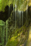 Waterfall on mossy background stock images