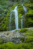 Waterfall on mossy background Stock Photo