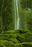 Waterfall on mossy background Stock Photography