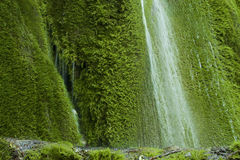Waterfall on mossy background Royalty Free Stock Image