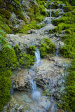 Waterfall on mossy background Royalty Free Stock Images