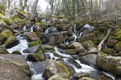 Waterfall and mossy rocks at Becky Falls, Devon Royalty Free Stock Images