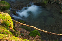 Waterfall. With mossy rocks and branch Stock Image