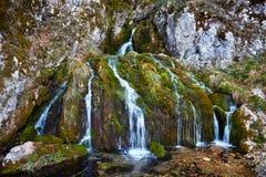 Waterfall on mossy rocks Royalty Free Stock Photos