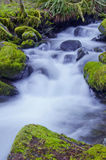 Waterfall with mossy rocks and soft water flow. Ing down a mountain stream stock photography