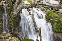 Waterfall mossy rocks tree snag Stock Photos