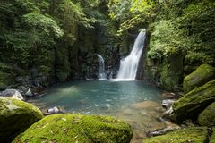 Waterfall and mossy rocks. Waterfall surrounded by green mossy rocks under forest in summer Stock Photos