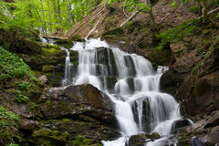 Waterfall on the moumtain river. Waterfall on the Carpatian mountaince, green moss and trees royalty free stock photos