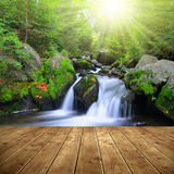 Waterfall on a mountain creek. Royalty Free Stock Photography