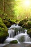 Waterfall on mountain creek Stock Images