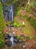 Waterfall on the mountain with fall maple leaves stock images
