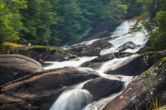 Waterfall in mountain forest. Stream with stones Stock Photos