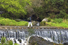 Waterfall in mountain landscape, island Madeira Royalty Free Stock Photo
