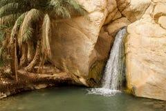 Waterfall in mountain oasis Chebika in Tunisia Stock Photos