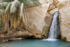 Waterfall in mountain oasis Chebika in Tunisia Stock Images