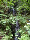 Peavine waterfall stock photo